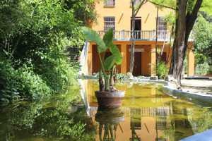 estanque de villa Vicenta en el Salt